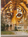The Tiger: Crispus Attucks High School Yearbook, 1979