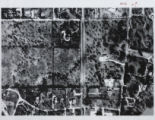 Ariel View of Wynnedale, 1956