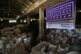 Bags of food stacked in shelter with Humanitarian Assistance Program sign